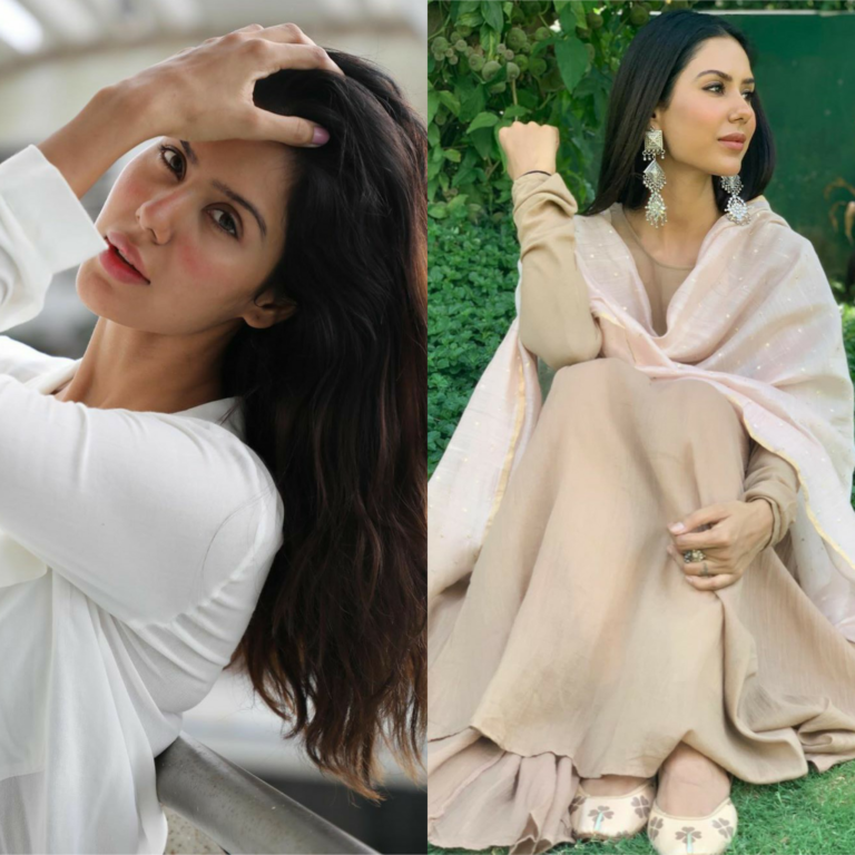 Either Ethnic Or Western! Which Attire Suits The Most On Actress Sonam Bajwa? You Decide!