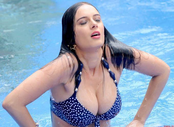 Evelyn Sharma hot pics