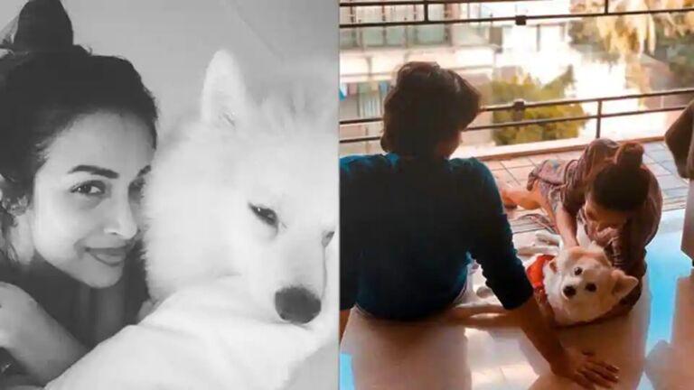 Malaika Shared A cute Photo With Son Arhan And Doggy Casper