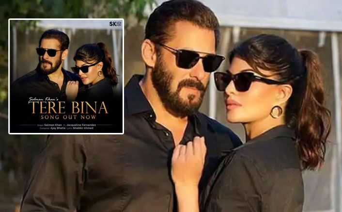 Salman's Song 'Tere Bina Goes' Blockbuster In Lockdown