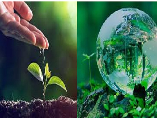 World Environment Day 2020 And It's Theme