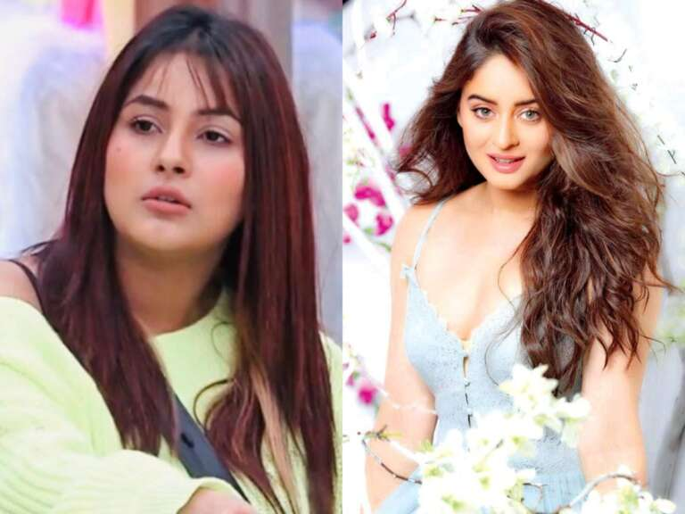 Mahhi ViJ Accused Of Not Returning The Clothes She Borrowed For Shehnaaz gill