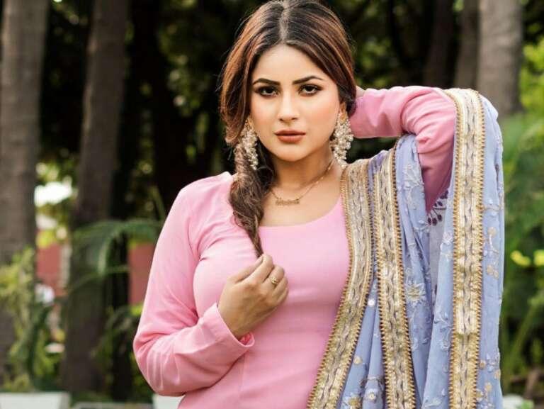Shehnaaz Gill's New Video Song Gone Viral