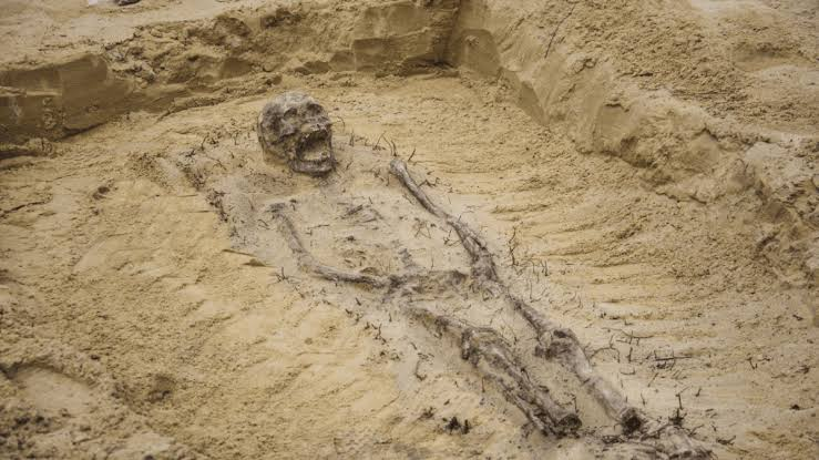 115 Skeletons Found in Excavation Are Being Linked To The Liberation Of Soul