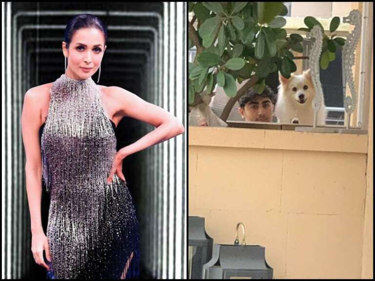 Malaika Arora's Emotional Post For Her Son Arhaan And Pet Canine