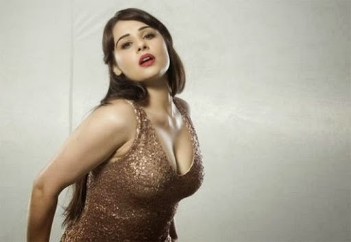 hot punjabi Actresses