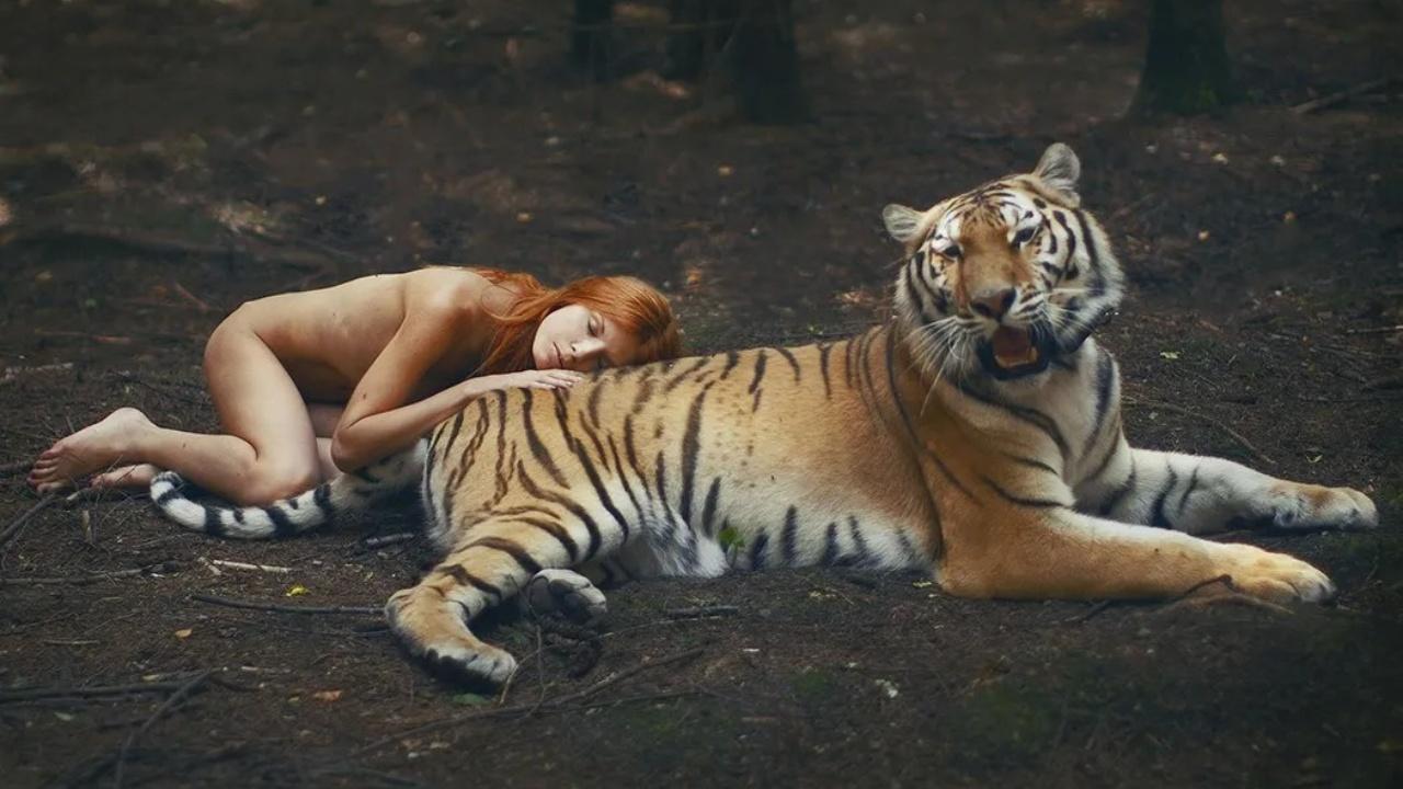 Wildlife photoshoots