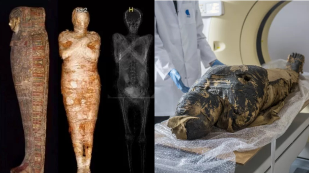 Interesting Discovery Of Egyptian Mummy Who Turned Out To Be Pregnant