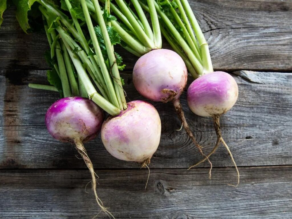 Diets During Pregnancy- turnip